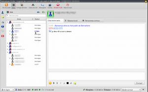 Capture d'écran de RetroShare