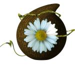 Libre en fête (logo)